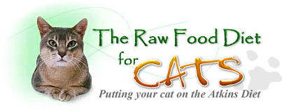 The Raw Food Diet for Cats